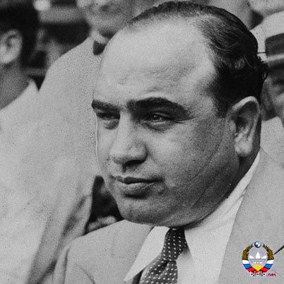 a biography of al capone the best known gangster